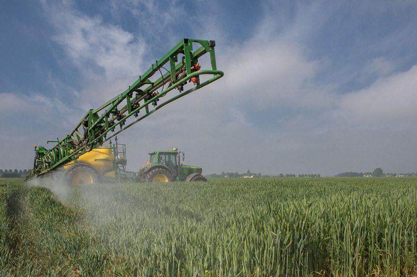406294 Brian Salomé spuit zijn tarwe met insecticiden