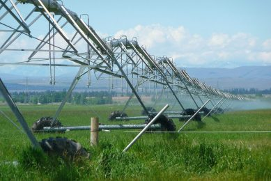 Camera system provides crop temperature data at lower cost