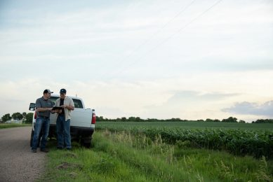Syngenta launches AI-driven seed selection platform