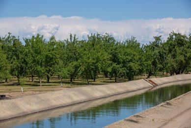 InSAR remote sensing improves groundwater monitoring