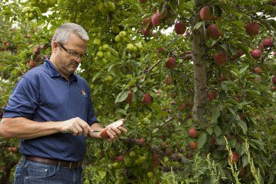 AgroFresh launches fruit harvest management tool