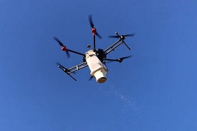 Aerial release of beneficial insects