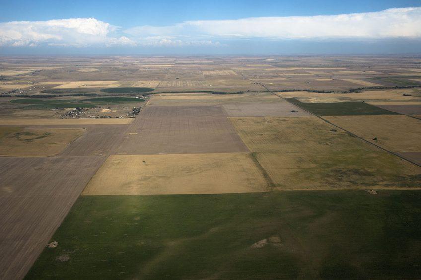 2016-09-03 02:47:01 Farmland near Denver International Airport in Denver, Colorado on September 2, 2016.     Robyn BECK / AFP