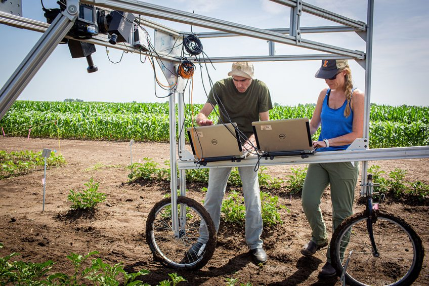 Screening for higher-yielding crop traits revolutionised