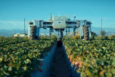 Agrobot takes strawberry harvesting robots to US