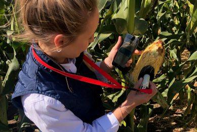 SCiO NIR analyser delivers corn moisture data in seconds