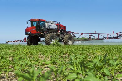 Could a fungus help farmers reduce pesticide use?