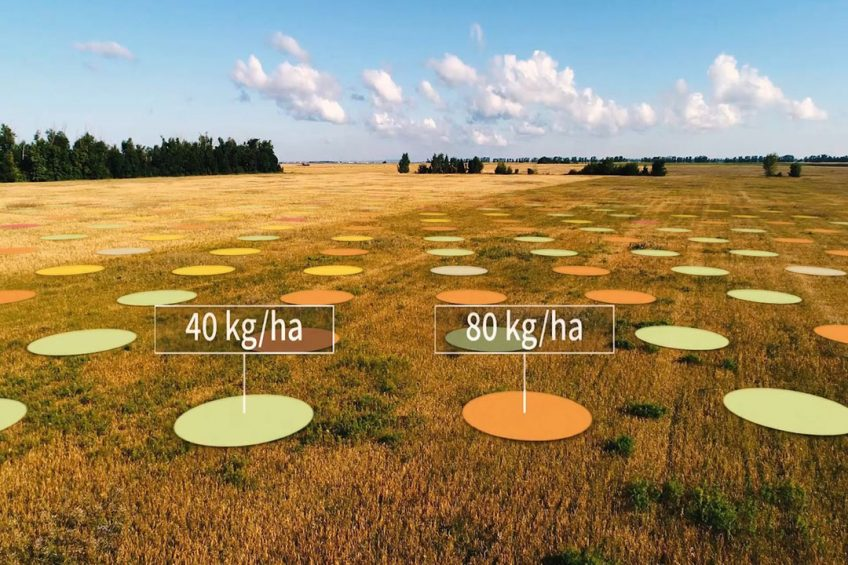 Yara and IBM to develop digital farming platform