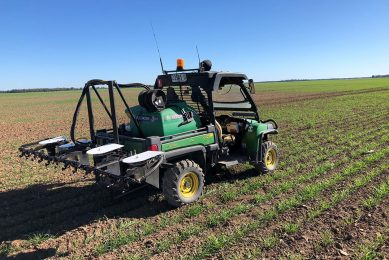 AutoWeed develops spraying robot for sugarcane farms