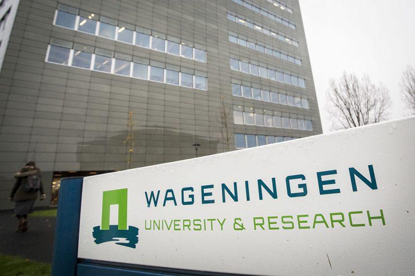 WAGENINGEN - Een logo de universiteit van Wageningen. In de Keuzegids Universiteiten van 2016 is de universiteit voor de twaalfde keer op rij uitgeroepen tot de beste universiteit van Nederland. ANP ALEXANDER SCHIPPERS