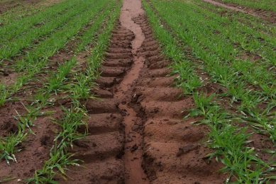 Unsustainable soil erosion in parts of UK