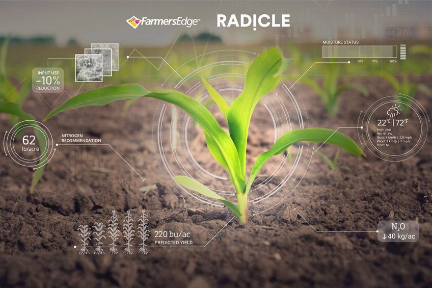 Farmers Edge and Radicle offer hi-tech carbon credit program