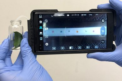Portable tech sniffs out plant disease in the field