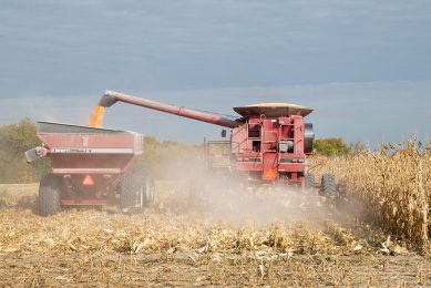 2015-10-22 00:00:00 BURLINGTON, IA - OCTOBER 22: Rick Wirt and his daughte rKrista Kempke harvest corn on October 22, 2015 near Burlington, Iowa. Wirt and his daughter farm more than 2,000 acres in the area. According to the National Corn Growers Association, the overall corn crop is on track to have the 2nd highest average yield on record.   Scott Olson/Getty Images/AFP == FOR NEWSPAPERS, INTERNET, TELCOS & TELEVISION USE ONLY ==