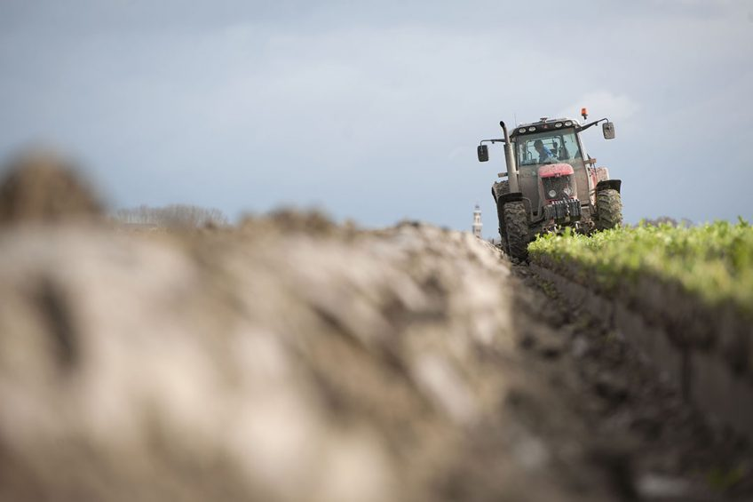 Cover crops to boost soil microbial abundance by 27%