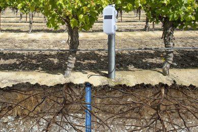 NEW HOBOnet Multi-Depth Soil Moisture Sensor from Onset