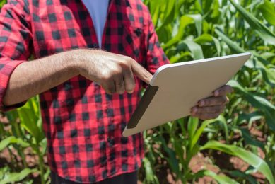 Research sheds light on farmers  reluctance to adopt tech