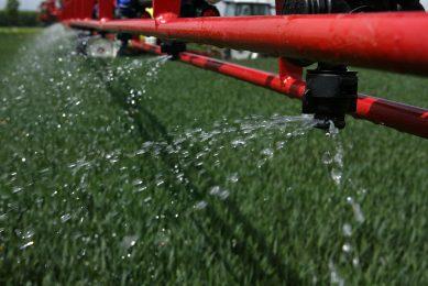 Fungi could reduce reliance on fertilisers