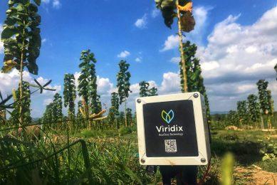 Viridix and Talgil automate full irrigation cycle