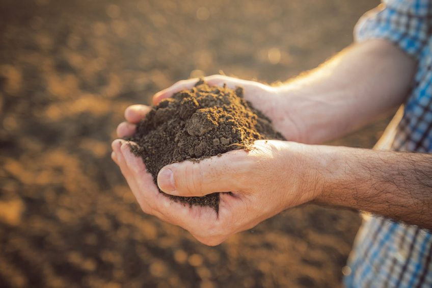 Bayer will start rewarding farmers in Brazil and the U.S. for generating carbon credits by adopting climate-smart practices   such as no-till farming and the use of cover crops. ----