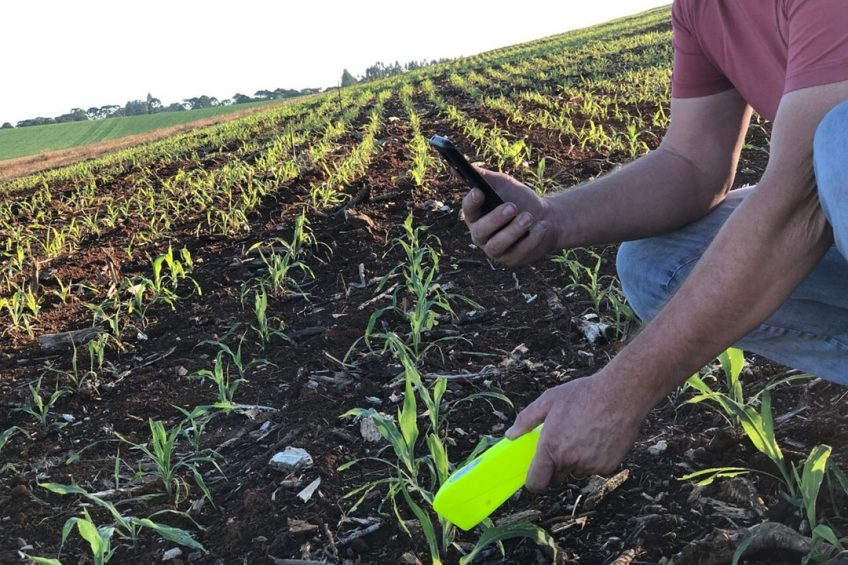 Portable NIR scanner analyses crops in under a minute