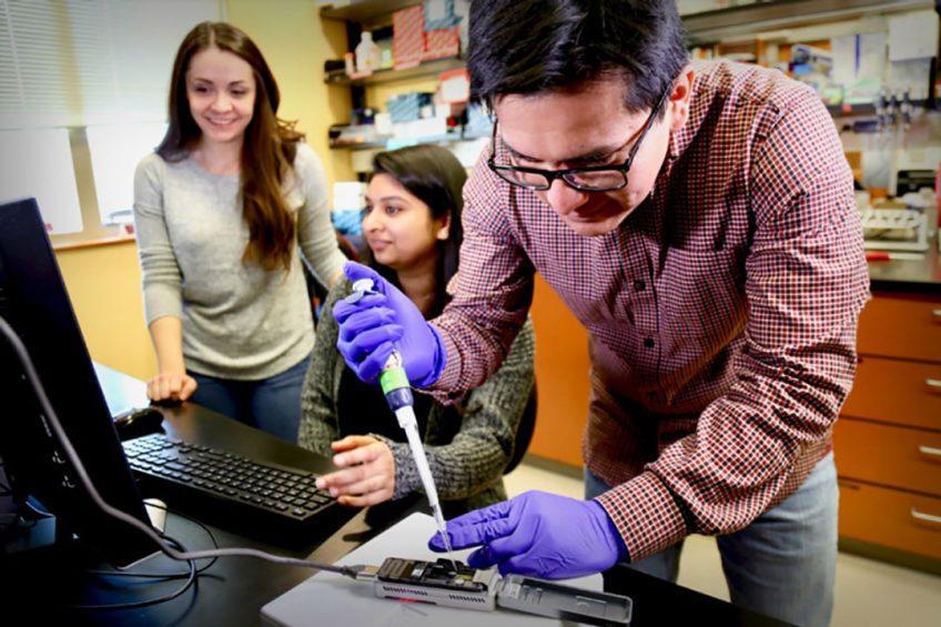 New technology to identify plant pathogen strains