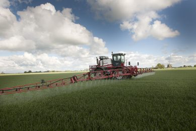 Spraying fungicides on wheat may be (partly) replaced by spraying endocytes, or by coating seeds with these natuarlly occurring organisms.