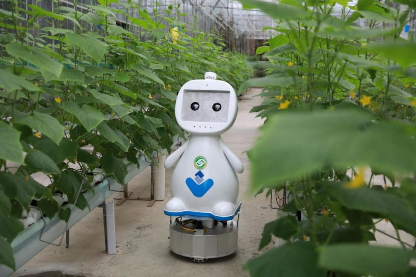 Farming robot makes its debut in China