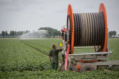 Most Dutch growers (still) use hose reel systems because of their easiness to use and capacity although they do realise that these are not ideal from the perspective of water utilisation.