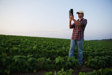 Manage farm data successfully in these 6 steps