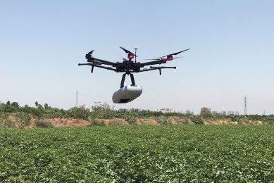 Taranis and BASF provide crop monitoring in Brazil