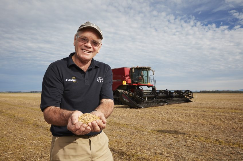 Weather headaches and a new wheat yield record