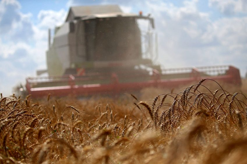 2017-08-17 11:13:27 epa06148535 A mowing machine works in a field during wheat harvest in Pushkino village, outside Moscow, Russia, 17 August 2017. Russia is a leading wheat export nation. A report published by the US Department of Agriculture expects Russia to export around 30 million tonnes of wheat in 2017-18.  EPA/MAXIM SHIPENKOV