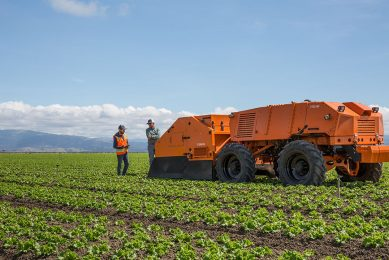Most currently available field robots are intended to weed in high-value row crops such as lettuce.