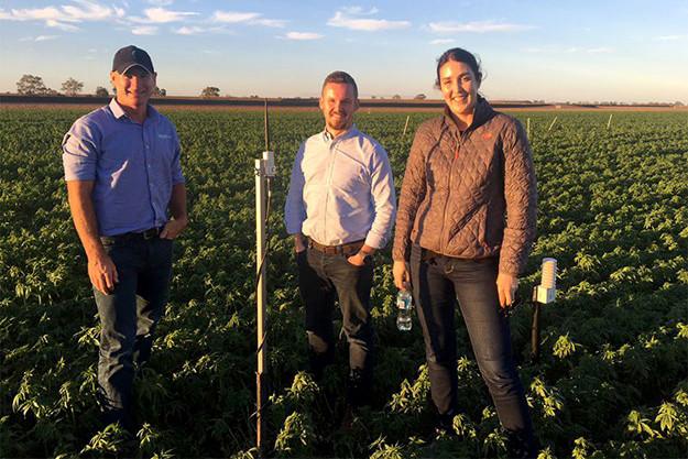 GoannaAg secures $ 3.35 million for on-farm sensors