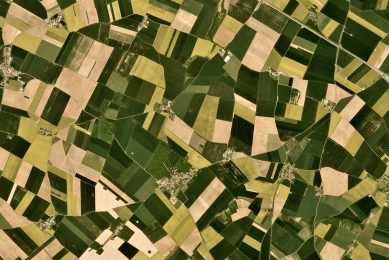 BASF and Planet provide daily monitoring to farmers