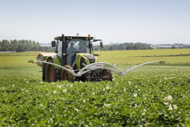 Soil remains 'black box' in nitrogen advice
