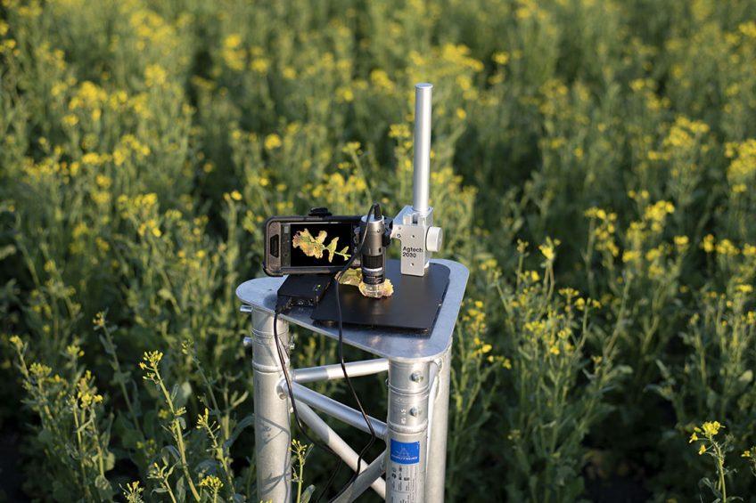 The sensor combines UV light and microscopic amplification.