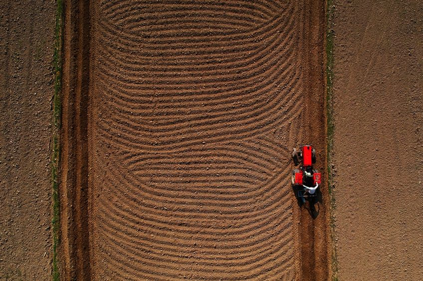 This aerial photo taken on October 12, 2018 shows Indian farmer Ajay driving a tractor to plough a field with his brother Tejpal near the banks of Yamuna river in New Delhi. (Photo by PRAKASH SINGH / AFP)