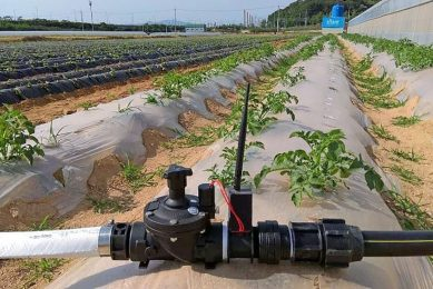 The SMARF valve is a smart irrigation valve which applies LPWAN communication technology to agricultural irrigation valves.