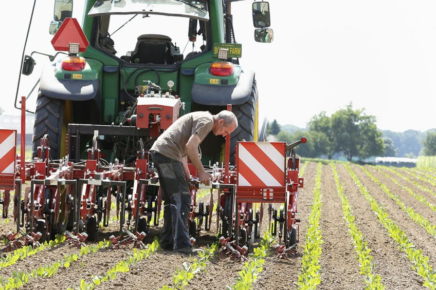Steketee shows camera-controlled hoeing machine at Agritechnica