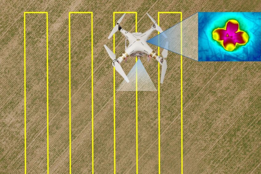 Protecting farmland bird nests with drones and AI