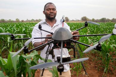 2016-10-24 10:40:06 A technician holds a drone used to scout a plot of a heat-tolerant hybrid maize growing at the Chiredzi Research Station, on October 24 2016.  Under the scorching Zimbabwean sun, cattle seek shade among stunted thorn bushes in the drought-prone district of Zaka, where crops wither due to increasing temperatures and changing weather patterns. Severe lack of rain across southern Africa has hit the country hard, with government officials saying a quarter of the population faces starvation. Many villagers are forced to survive on wild fruit. / AFP PHOTO / JEKESAI NJIKIZANA