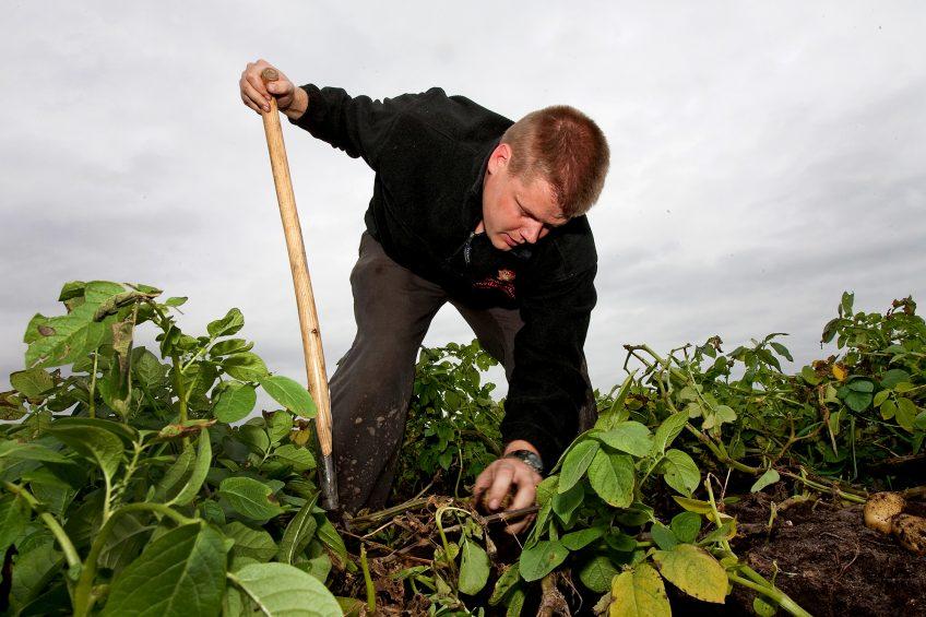 Dutch precision farming pioneer sees 1% a year yield benefit