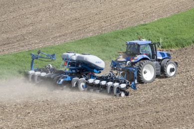 Dual hybrid maize and soybean planting increases yield