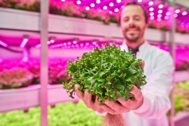 Video: Vertical farming offers solution for high-end niche products