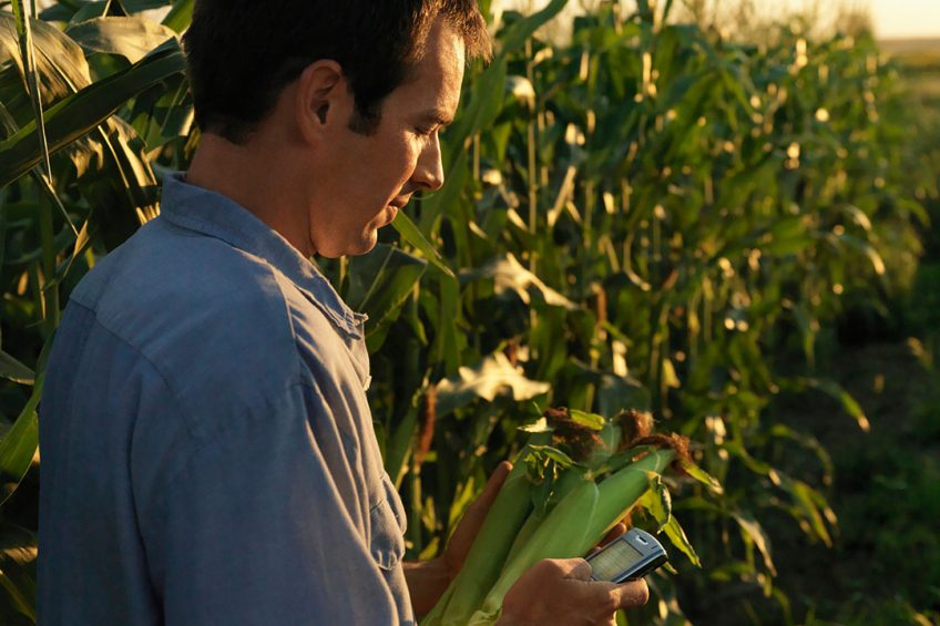 BASF offers xarvio Field Manager free of charge
