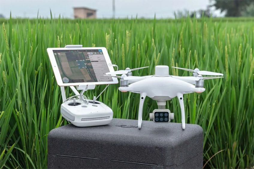 DJI P4 Multispectral drone for precision farming