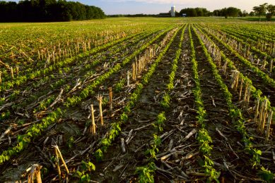 Using high-pressure water for no-till planting