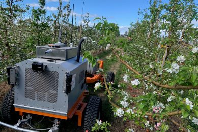 SwarmFarm and Green Atlas develop thinning robot for apple orchards